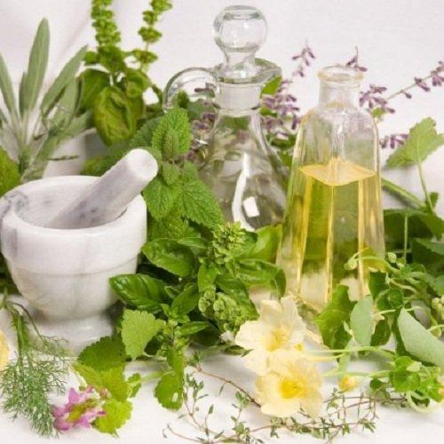 Лечение гастрита составами из трав, цветов, ягод