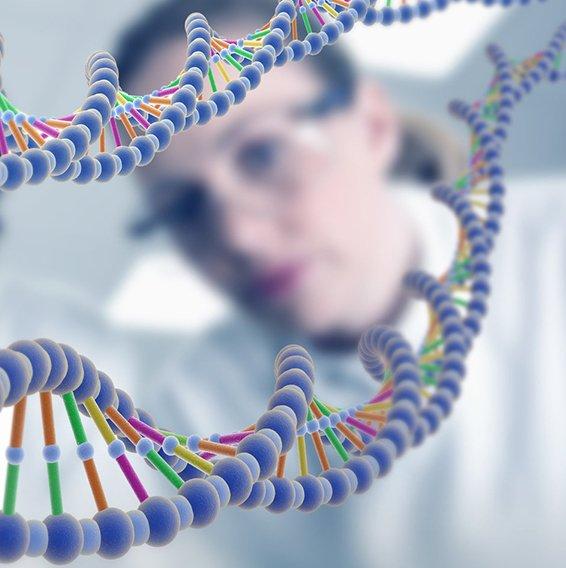 Генетическая предрасположенность- эндогенный фактор риска развития атрофического гастрита
