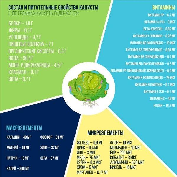 Состав капусты